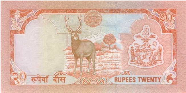 Купюра номиналом в 20 непальских рупий, обратная сторона