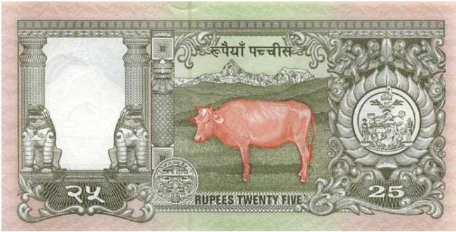Купюра номиналом в 25 непальских рупий, обратная сторона